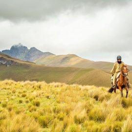 Horseback Riding Full Day