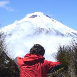 Cotopaxi National Park Full Day